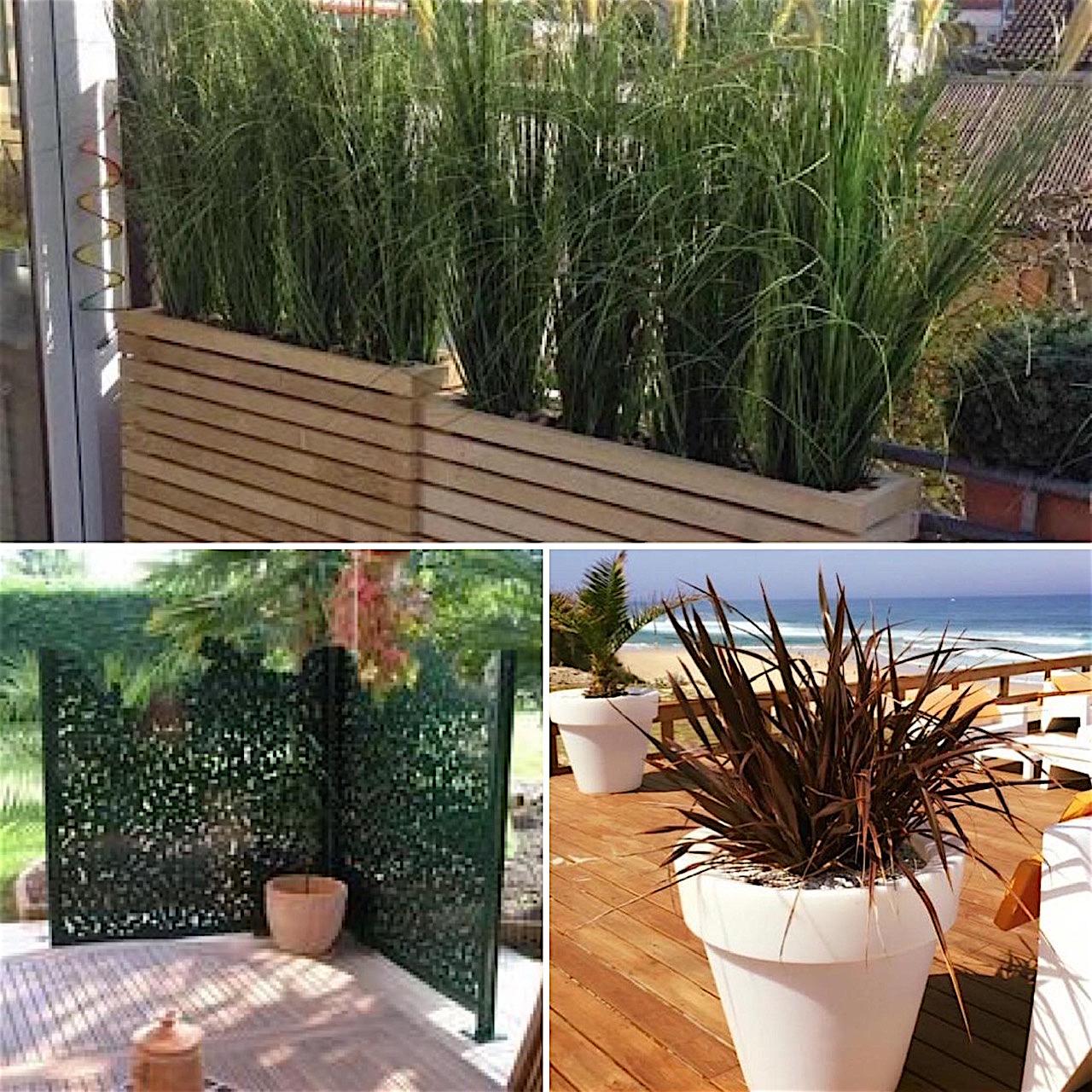 Comment choisir des plantes pour sa terrasse